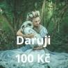 Daruji 100 Kč