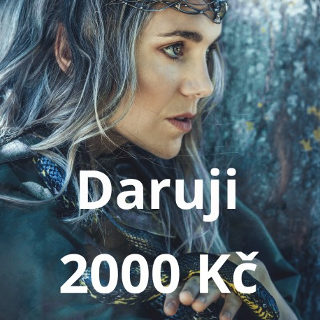 Daruji 2000 Kč