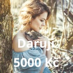 Daruji 5000 Kč