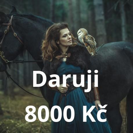 Daruji 8000 Kč