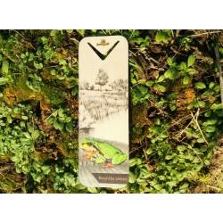 Dřevěná záložka rosnička zelená