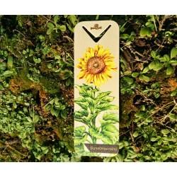 Dřevěná záložka slunečnice roční