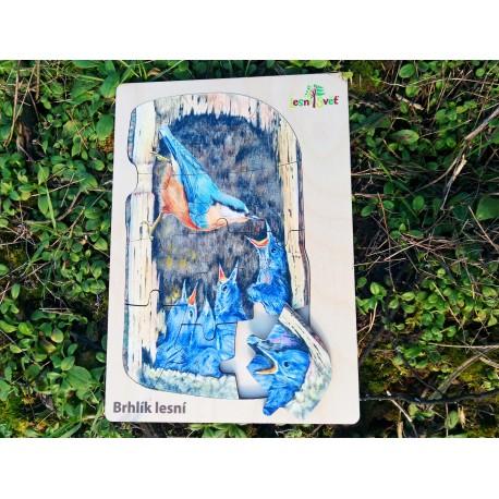 Puzzle velké - jak hnízdí brhlík lesní?