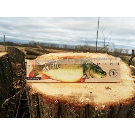 Pravítko dřevěné 15 cm - kapr