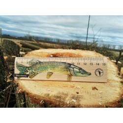 Pravítko dřevěné 15 cm - štika