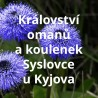 Království omanů a koulenek Syslovce u Kyjova