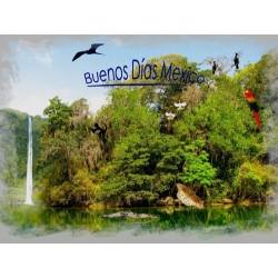 Pouští a pralesem v Mexiku