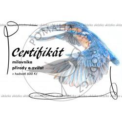 Certifikát ledňáček