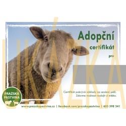 Adopční certifikát