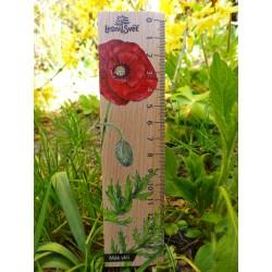 Pravítko dřevěné 20 cm - mák