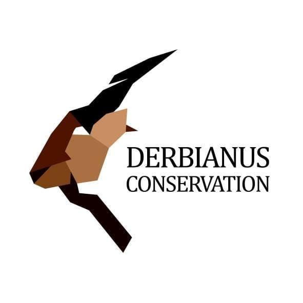 Derbianus