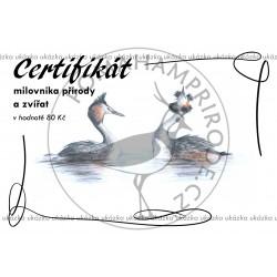 Certifikát potápky