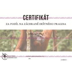 Certifikát orangutan II