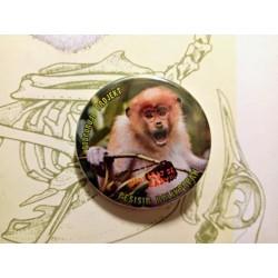 Placka - mládě kahau nosatého