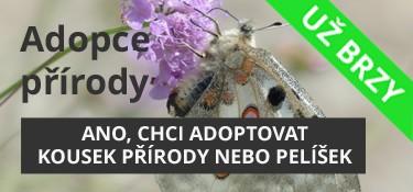 Adoptujte si kousek přírody nebo zvířecí pelíšek